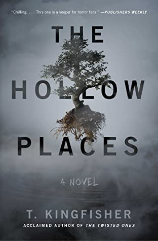 The Hollow Places book review